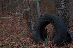 Woodz und Reifen stockbild