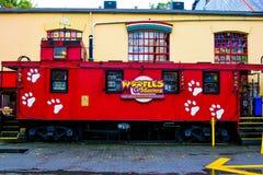 Woofles и Meowz, остров Granville, Ванкувер, b C Стоковые Изображения RF