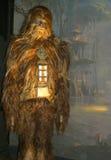 Wookie solo Foto de archivo