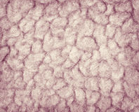 Wool background Stock Photography