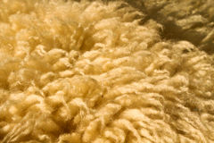 Wool Royalty Free Stock Photo