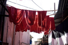 Wool drying on washing line. Red woollen yarn drying on washing or clothes line outdoors, Marrakesh, Morocco royalty free stock photos