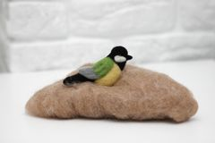 Wool felted bird on wool for felting. On white background stock photo