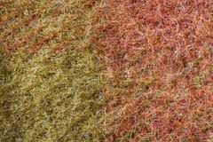 Wool fibres close up. Colourful wool fibres close up, macro detail royalty free stock photos