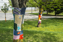 Wool knitted around trees Royalty Free Stock Images