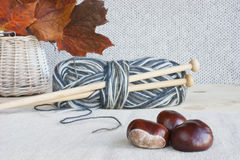 Wool, knitting needles, autumn leaves, horse chestnuts. Wool with knitting needles, concept for traditional craft and home made clothes royalty free stock photography