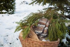 Wool mittens on the basketful of firewood near snowy Christmas-tree Stock Photos