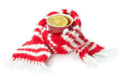 Wool scarf, wrapped around a cup of tea Stock Photos