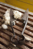Wool Shears. An old pair of wool shears in a shearing shed Stock Image