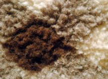Wool square texture close-up Stock Photos
