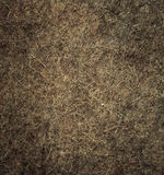 Wool texture. Royalty Free Stock Photos