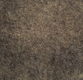 Wool texture. Royalty Free Stock Photography