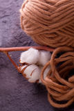 Wool with white cotton plant. Brown wool with white cotton plant royalty free stock photography