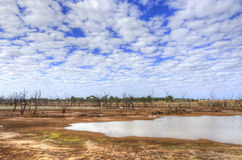Woolabra Queensland, Australien Arkivfoto