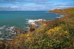 Woolacombe Devon Coast Imagens de Stock