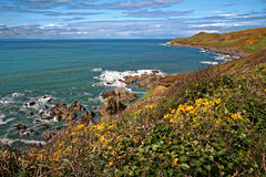 Woolacombe Devon Coast Stock Images
