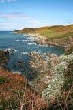 Woolacombe Devon wybrzeże Obrazy Stock