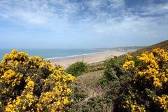Woolacombe  North  Devon coast. Sunset Woolacombe Beach in North Devon South West England United kingdom Stock Photo