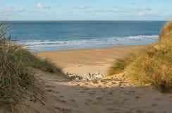Woolacombe sand nära Barnstaple, Devon, England royaltyfri bild