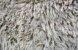 Woolen blankets Stock Photos