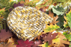 Woolen cap on autumn leaves. Woolen yellow and green cap on autumn leaves Stock Images