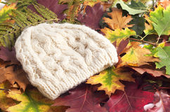 Woolen cap on autumn leaves. Woolen beige cap on autumn leaves Stock Photo