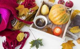 Woolen cozy scarf with autumn decoration,pumpkin, leaves, tea Stock Images