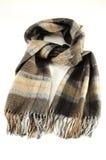 woolen scarf Royaltyfria Foton