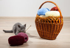 Woolen yarn and little kitten in a braided basket Stock Photo