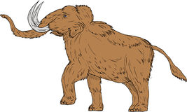 Woolly Mammoth Prancing Drawing Stock Photography
