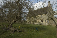 Woolsthorpe Manor and the apple tree. The birthplace of Isaac Newton, Woolsthorpe Manor and the famous apple tree Stock Image