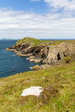 Wooltack Point near Skomer Island Pembrokeshire Wales Royalty Free Stock Images