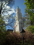 Woolworth Building New York City USA. Viewed through the trees and spring blossoms of New Yorks City Hall Park, the Woolworth Building was the worlds tallest royalty free stock photos