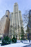 Woolworth Building - New York Stock Photography