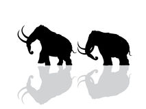 Wooly mammoth silhouette. S over white background Royalty Free Stock Image