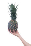 Wooman's hand with pineapple isolated on white stock photos