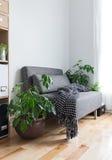 Woonkamer met comfortabele leunstoel en installaties Stock Foto's