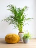 Woonkamer met houseplants en poef royalty-vrije stock afbeelding