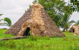 Woonplaats Indiër op de rivier, onder de palmen stock afbeelding