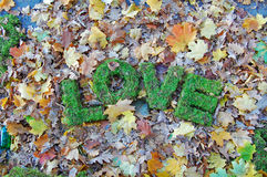 Woordenliefde op de herfstachtergrond Stock Fotografie