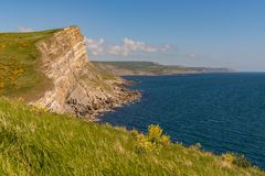 Worbarrow Bay, Jurassic Coast, Dorset, UK. Cliffs at the Jurassic Coast, seen on South West Coast Path between Worbarrow Bay and Brandy Bay, Dorset, UK Stock Photography