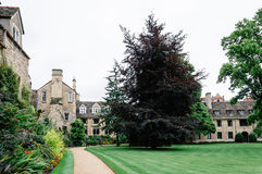 Worcester College in Oxford. Oxford, UK - August 12, 2015: Main courtyard of Worcester College in Oxford. Worcester College is one of the constituent colleges of stock photo