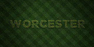 WORCESTER - fresh Grass letters with flowers and dandelions - 3D rendered royalty free stock image. Can be used for online banner ads and direct mailers royalty free illustration