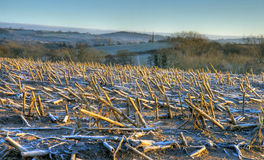Worcestershire farmland in winter. Farmland on a cold winters evening, Drayton near Belbroughton, Worcestershire, England Stock Photos