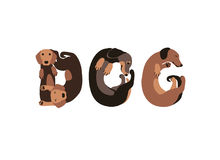 Word «dog» of dachshund dogs. Vector Royalty Free Stock Photography