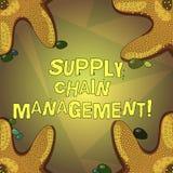 Word écrivant le supply chain management des textes Concept d'affaires pour l'analysisagement du flux des biens et des services illustration de vecteur