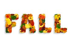 "Word ""FALL"" made with colorful hawthorn, maple, alder, oak fall leaves, physalis lanterns. Physalis alkekengi, dog-rose fruits and acorns, with grey stock image"
