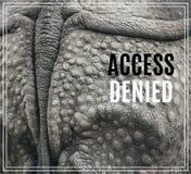 Word Access a nié Plan rapproché de l'armure forte d'un rhinocéros image libre de droits