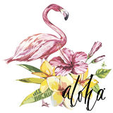 Word- Aloha. Flamingo with tropical flowers. Element for design of invitations, movie posters, fabrics and other objects Stock Photo