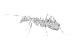 Word ant mixed to be figure of ant, with typography style, isola Stock Images